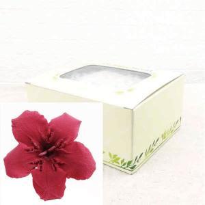 プリザーブドフラワー 材料 花材 ニオイサクラ バンガンディー 箱 12輪入|solargift