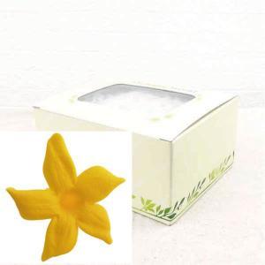 ジャスミン オレンジ 箱 12輪入 プリザーブドフラワー 材料 花材 prehana world|solargift