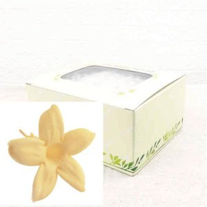 ジャスミン ネーブルイエロー 箱 12輪入 プリザーブドフラワー 材料 花材 prehana world|solargift