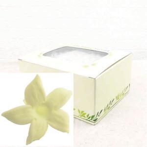ジャスミン シャトルズイエロー 箱 12輪入 プリザーブドフラワー 材料 花材 prehana world|solargift