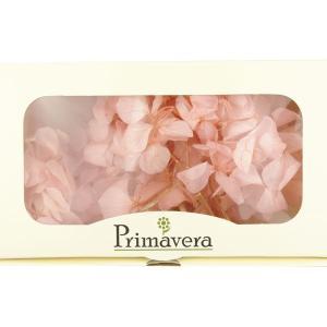 プリザーブドフラワー 材料 花材 HYDRAGEA アジサイ ライトピンク 箱 2輪入 solargift