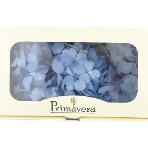 プリザーブドフラワー 材料 花材 HYDRAGEAアジサイ ライトブルー 箱 2輪入 solargift