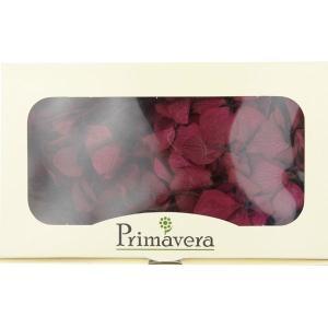 プリザーブドフラワー 材料 花材 HYDRAGEAアジサイ ラズベリー 箱 2輪入 solargift