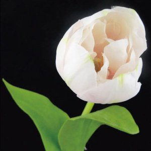 チューリップ ライトピンク 1本入 アーティシャル 花材 asca|solargift