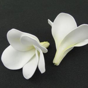 プルメリア ホワイト 小分け 3個入 アーティシャル 花材 asca|solargift