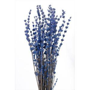 プリザーブドフラワー 材料 ラベンダー ブルー 袋 約50g入 プリザーブドフラワー 花材 大地農園 solargift