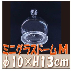 ミニグラスドーム Mサイズ φ約10cm プリザーブドフラワー 材料 花器 solargift