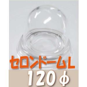 セロンドーム Lサイズ φ120cm プリザーブドフラワー 材料 花器 solargift