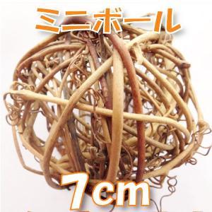 サンキライ ミニボール 7cm ナチュラル 小分け 1個入 デコ 73595|solargift