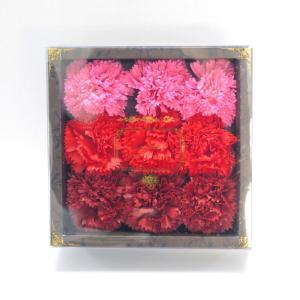 Q-FLA カーネーションフレグランス9輪入り レッド キューフラ 入浴剤 お花ギフトボックス 母の日 ラッピング対応|solemo