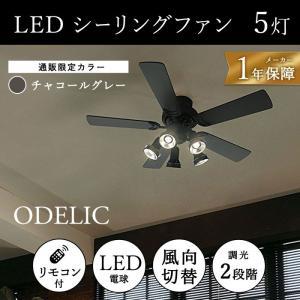 【通販限定モデル】 オーデリック ODELIC LEDシーリングファン 照明 シーリングファン 灯具可動型 省エネ|solemo