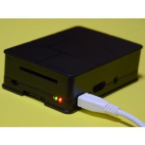 Raspberry Pi 3B用のプラスチックケース黒【今なら特典つき】