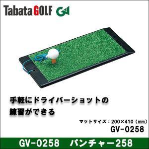 【取寄せ商品】Tabata(タバタ) GV-0258 パンチャー258 パンチャー 練習用品 ゴルフ|somethingfour