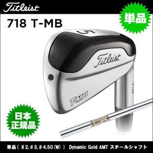 取寄せ商品 Titleist(タイトリスト) 718 T-MB アイアン 単品( ♯2,♯3,♯4,50(W) ) Dynamic Gold AMT スチールシャフト ゴルフクラブ|somethingfour