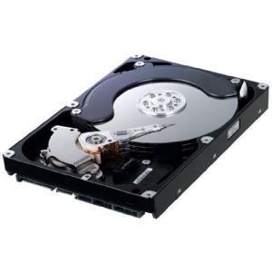 送料無料 Samsung 750 GB SATA II Hard Drive