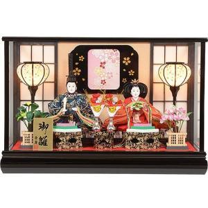 雛人形 No.306-73 ガラスケース入り 親王飾り 黒 写真額付 soneningyo