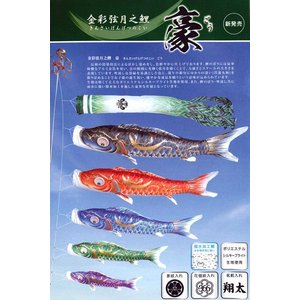 【3m】金彩弦月之鯉 豪 庭園用 ガーデンセット 6点 徳永鯉のぼり|soneningyo
