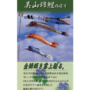 鯉のぼり 【3m】 【美山錦】 庭園用 スタンド(砂袋)セット|soneningyo