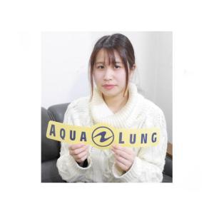 AQUALUNG(アクアラング) ステッカー(大) Sticker|sonia