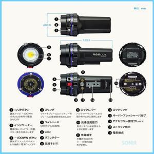 RGBlue(アールジーブルー) 【SYSTEM01-V3】 System01-3 システム01バージョン3(水中ライト・同梱品含む)|sonia