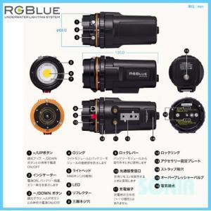RGBlue(アールジーブルー) System02-2 システム02バージョン2 LEDライト(水中ライト・同梱品含む)|sonia