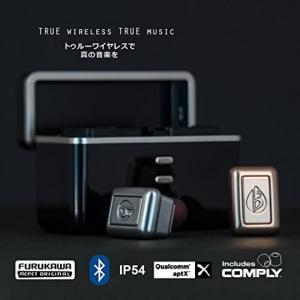 ブルートゥースヘッドホン fFLAT5 Aria Two True Wireless Bluetoo...