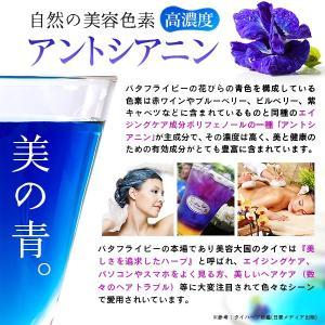 青いお茶 バタフライピー 2袋セット メール便対応|sonique|06