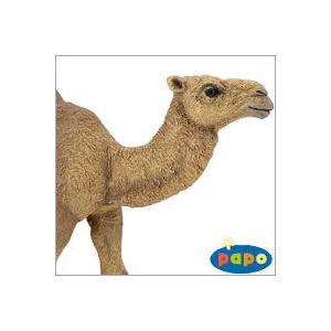 ●フランスのPapo社が製作したWILD ANIMALS (陸上動物)シリーズのヒトコブラクダ (ら...