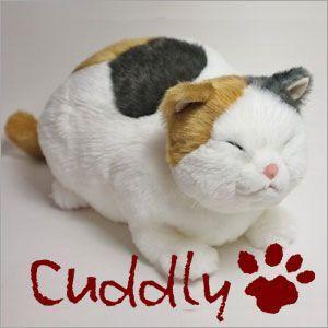 <Cuddly>カドリー こだわりのぬいぐるみ 猫のヌイグルミ 猫のヌイグルミ マリア りらっくす (Maria Relax)|soprano