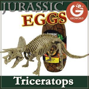 ●ジオワールド ジュラシックエッグ「トリケラトプス」は、恐竜博物館で人気のトリケラトプスの恐竜骨格模...