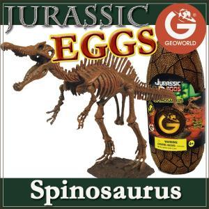 ●ジオワールド ジュラシックエッグ「スピノサウルス」は、恐竜博物館で人気のスピノサウルスの恐竜骨格模...