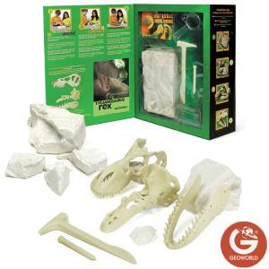 ジオワールド社 ティラノサウルス 頭蓋骨発掘セット 恐竜発掘セット soprano