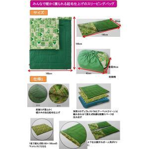 コールマン(Coleman) 寝袋 ファミリー2in1 C10 使用可能温度10度 封筒型 2000027256|sorachip3