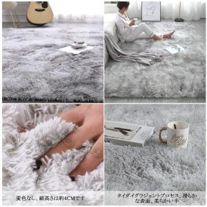Berukon ラグ カーペット 洗える ラグマット 3色選べる 絨毯 防ダニ 滑り止め付 防ダニ 抗菌 防臭 160×200cm(約2畳)|sorachip3