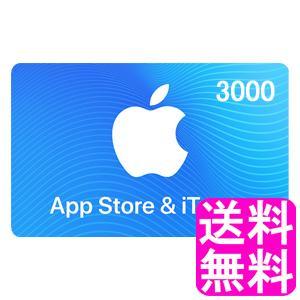 【翌営業日迄にコード通知専用商品】 App Store & iTunes ギフト 3000円|soryomuryotekisyoten