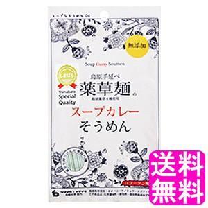 送料無料 400円 ポイント消化 薬草麺のスープカレーそうめん 【1袋】|soryomuryotekisyoten