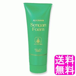 送料無料 ポイント消化 アロチャーム 洗顔フォーム|soryomuryotekisyoten