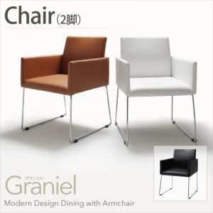 モダンデザインアームチェア付きダイニング【Graniel】グラニエル チェア2脚|sotome
