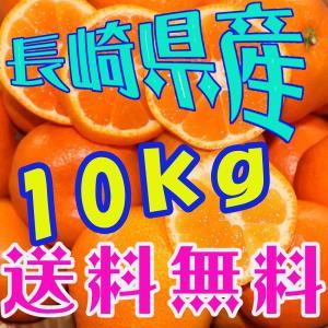 送料無料 長崎県産みかん 約10kg サイズ(S・M・L)混合|sotome