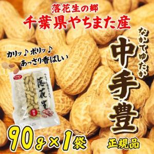 ポイント消化 送料無料 お試し平成29年産 新豆 からつき落花生 千葉県やちまた産 中手豊品種 90g×1袋 ピーナッツ