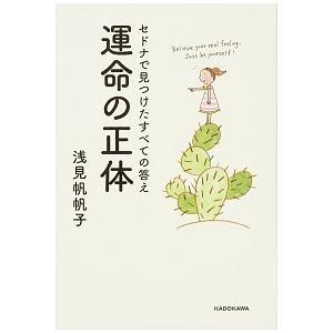 セドナで見つけたすべての答え 運命の正体 浅見 帆帆子 A:綺麗 D0930B|souiku-jp