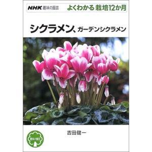 シクラメン、ガーデンシクラメン 吉田 健一 B:良好 F0140B|souiku-jp