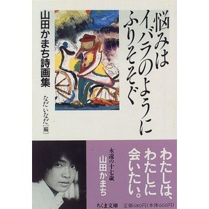 悩みはイバラのようにふりそそぐ―山田かまち詩画集 山田 かまち C:並 H0280B