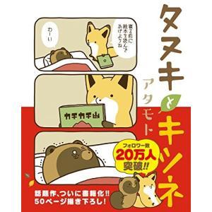 タヌキとキツネ アタモト A:綺麗 G0340B|souiku-jp