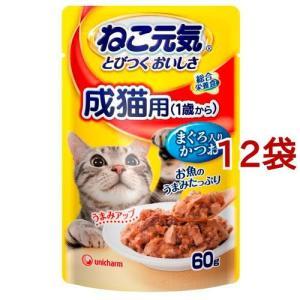 ねこ元気 総合栄養食 パウチ 成猫用(1歳か...の関連商品10