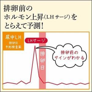 (第1類医薬品)ハイテスターH ( 10回用*3コセット )/ ハイテスター|soukai|02
