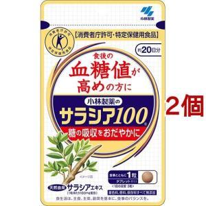小林製薬のサラシア100 ( 60粒*2コセッ...の関連商品9