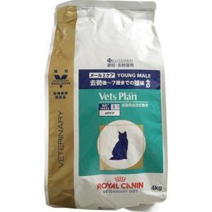 ロイヤルカナン 猫用 ベッツプラン メールケア ( 4kg )/ ロイヤルカナン(ROYAL CANIN)|soukai