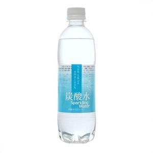 大分久住山系 炭酸水 天然水100% ( 500mL*24本...