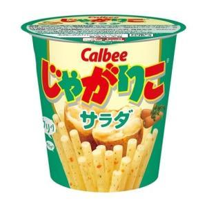 (訳あり)じゃがりこ サラダ ( 60g )/ じゃがりこ|soukai